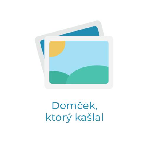 Domček, ktorý kašlal (Šk. rok 2015/2016)